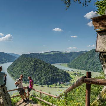 Donausteig Schlögener Schlinge WGD Donau Oberösterreich Tourismus GmbH Hochhauser RH18408 01